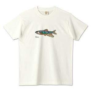 オイカワデザイン / オーガニックコットンTシャツ (TRUSS)