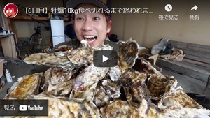 昆布の森の牡蠣『北海道仙鳳趾産 殻付き牡蠣』Lサイズ(200g以上/個) 大箱(約25個)
