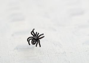 【New】ちいさな蜘蛛のちょっと大人なシングルピアス / クロにダイヤ