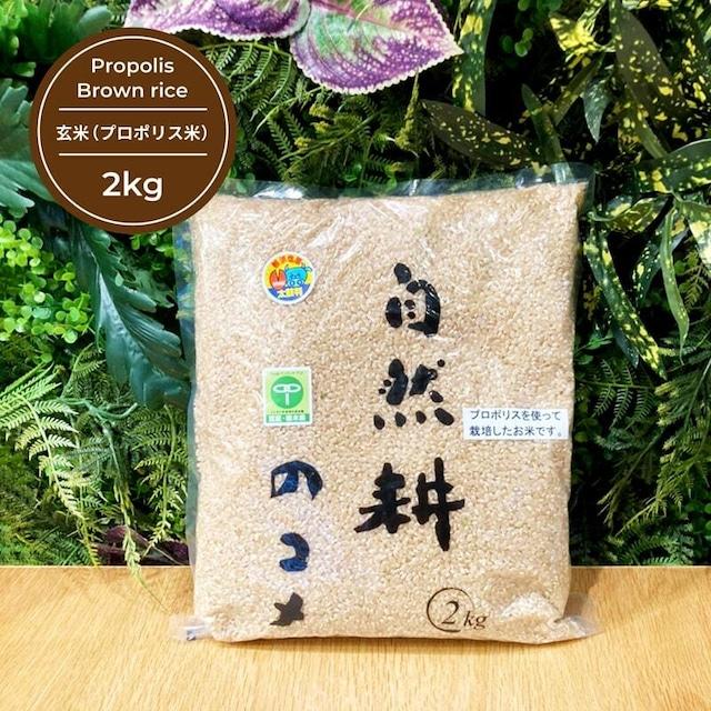玄米(プロポリス米) 2kg