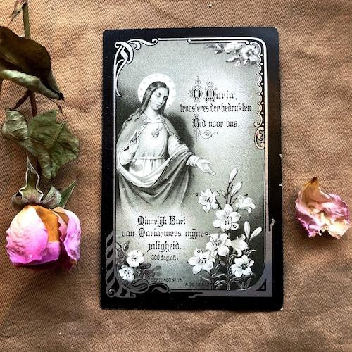 百合の聖母のデスカード