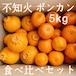 送料無料 不知火&ポンカン 食べ比べ 家庭用5kg 熊本県産