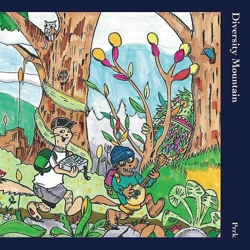 Prrk - Diversity Mountain (CD)