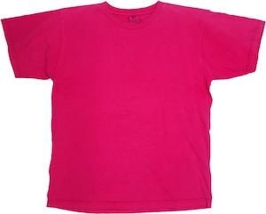 90年代 パタゴニア Tシャツ 【M】 | patagonia ヴィンテージ 古着