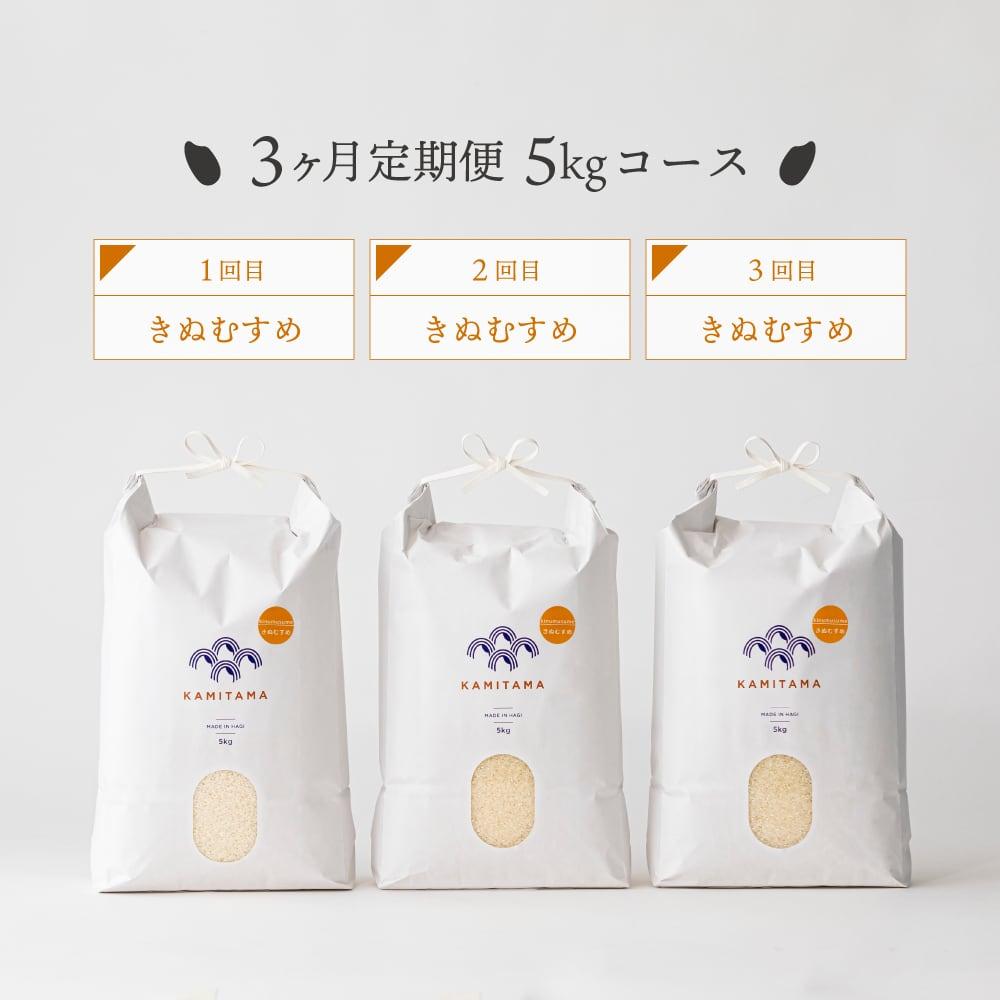 【定期便】令和3年度産 きぬむすめ5kg 毎月1回お届け(全3回) 送料無料
