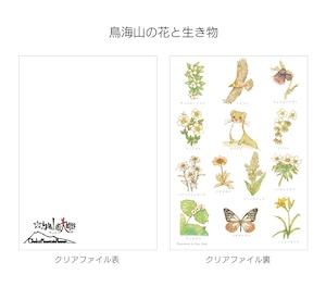 鳥海山頂美術館 A4クリアファイル(Kayo Ikeda)×5枚