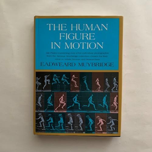 The Human Figure in Motion  / Eadweard Muybridge