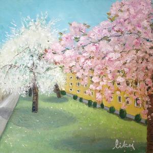 ベルリンの桜
