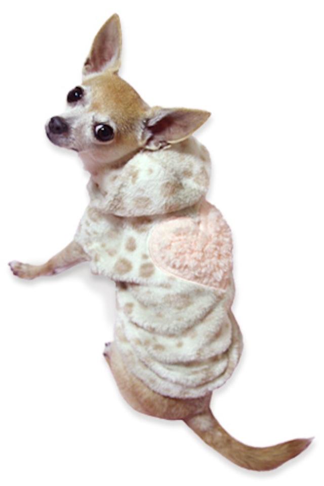 犬の生活 15AW サンゴマイヤー レオパードフーディ