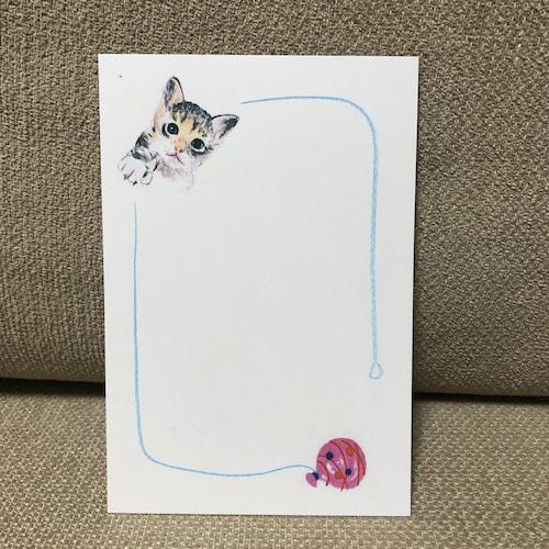 ポストカード 84(子猫)