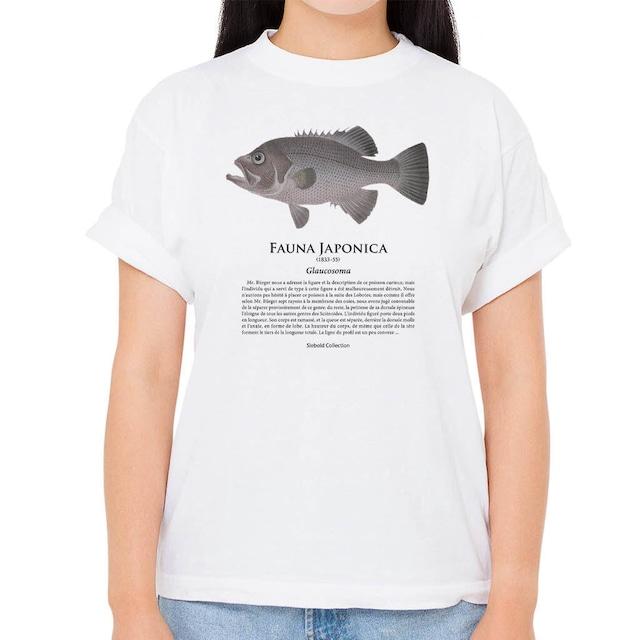【アオバダイ】シーボルトコレクション魚譜Tシャツ(高解像・昇華プリント)