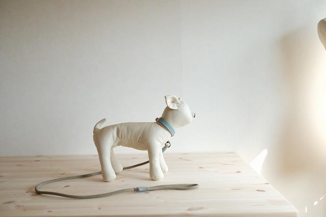 小型犬用のシンプルな首輪とリードのセット 水色