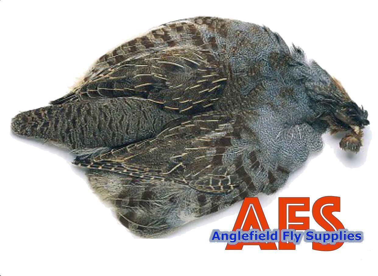 English Partridge Skin