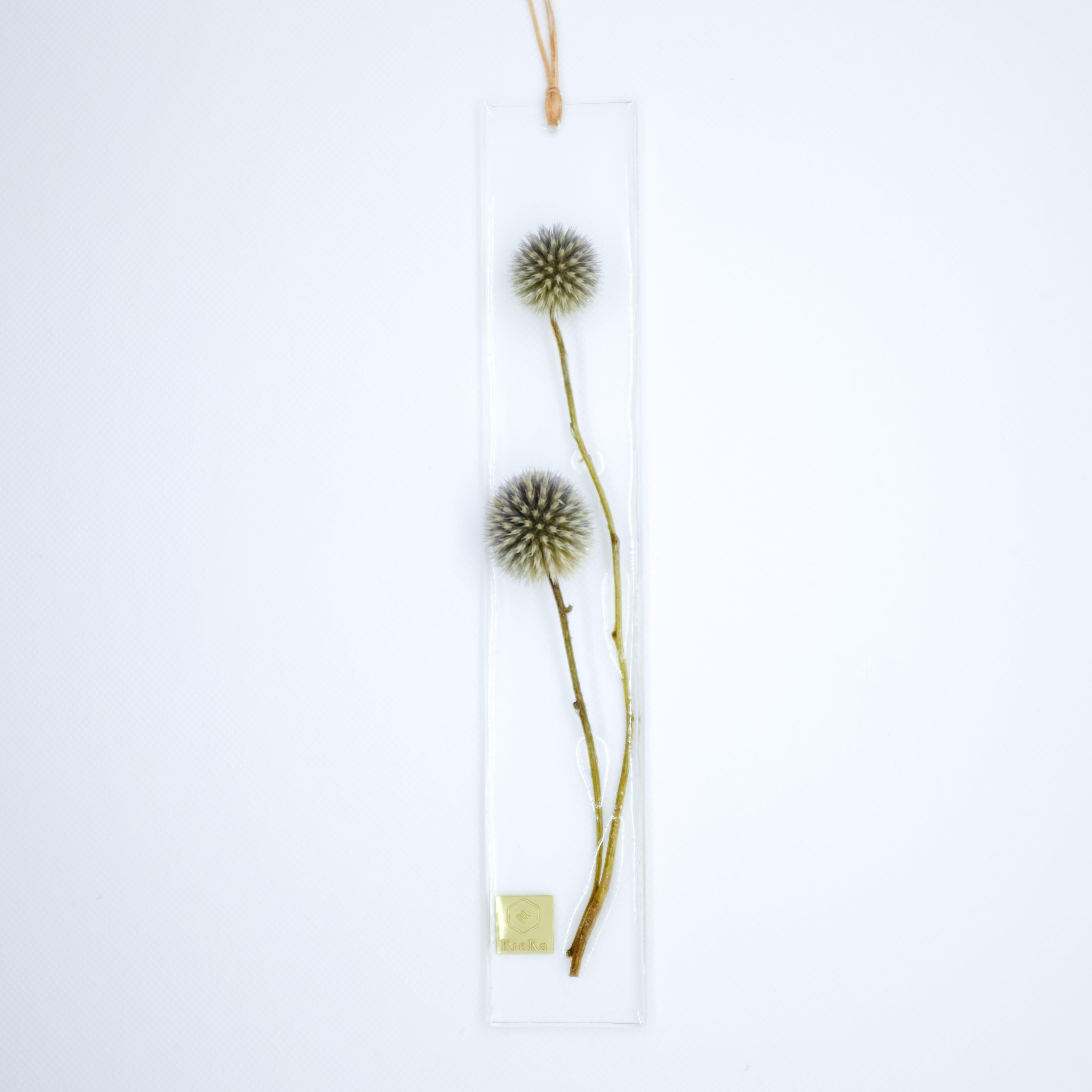 dried flower S ルリタマアザミ