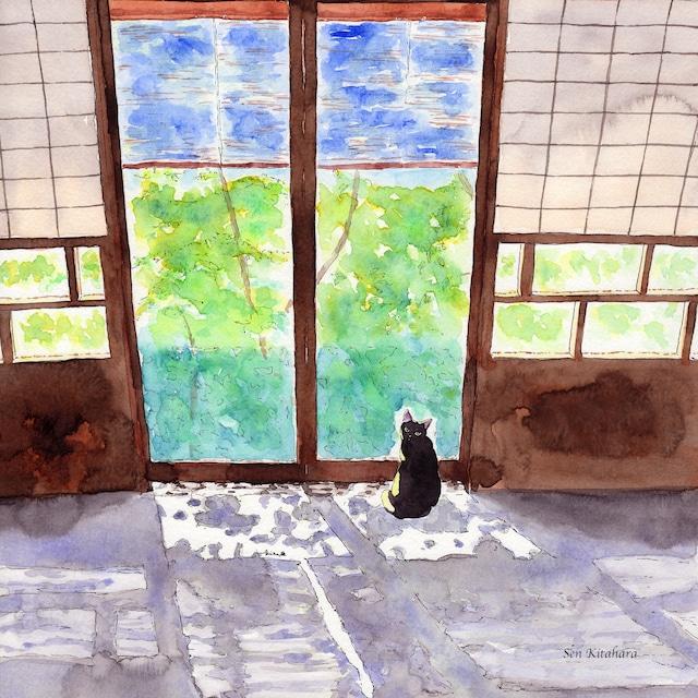 絵画 絵 ピクチャー 縁起画 モダン シェアハウス アートパネル アート art 14cm×14cm 一人暮らし 送料無料 インテリア 雑貨 壁掛け 置物 おしゃれ 水彩画 創作 猫 ネコ ねこ 動物 ロココロ 画家 : 北原 千 作品 : 木漏れ日