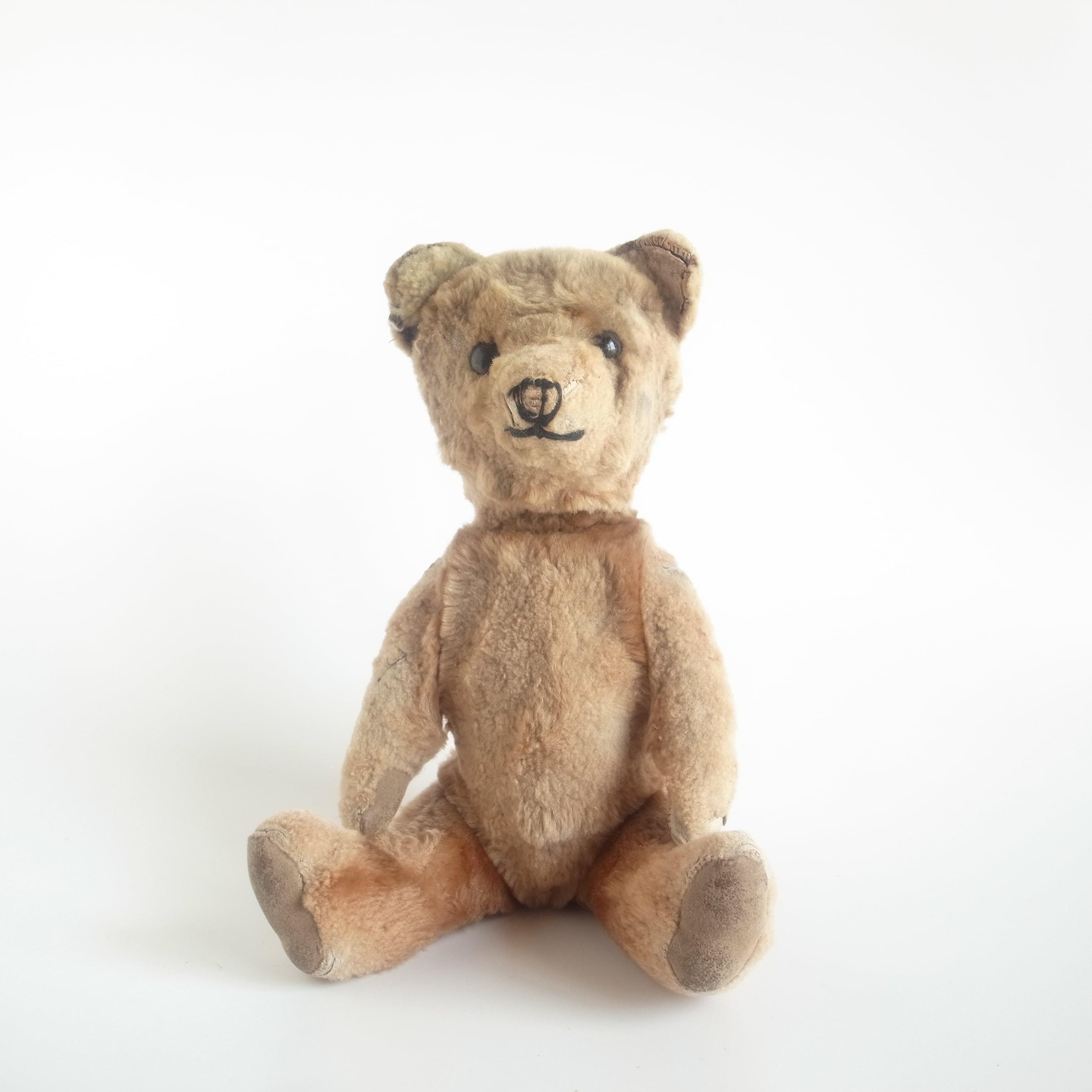 Teddy bear[A]