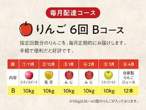 【B】りんご 6回 Bコース