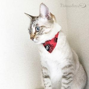 【ベアフット柄】猫用バンダナ風首輪/選べるアジャスター 猫首輪 安全首輪 子猫から成猫