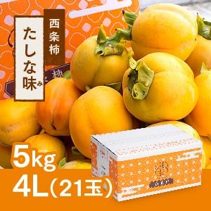 【予約 11月初旬頃より順次発送】西条柿 4L 21玉(5kg) たしな味