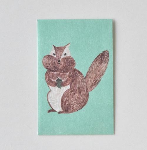 mm ぽち(多目的) Squirrel S