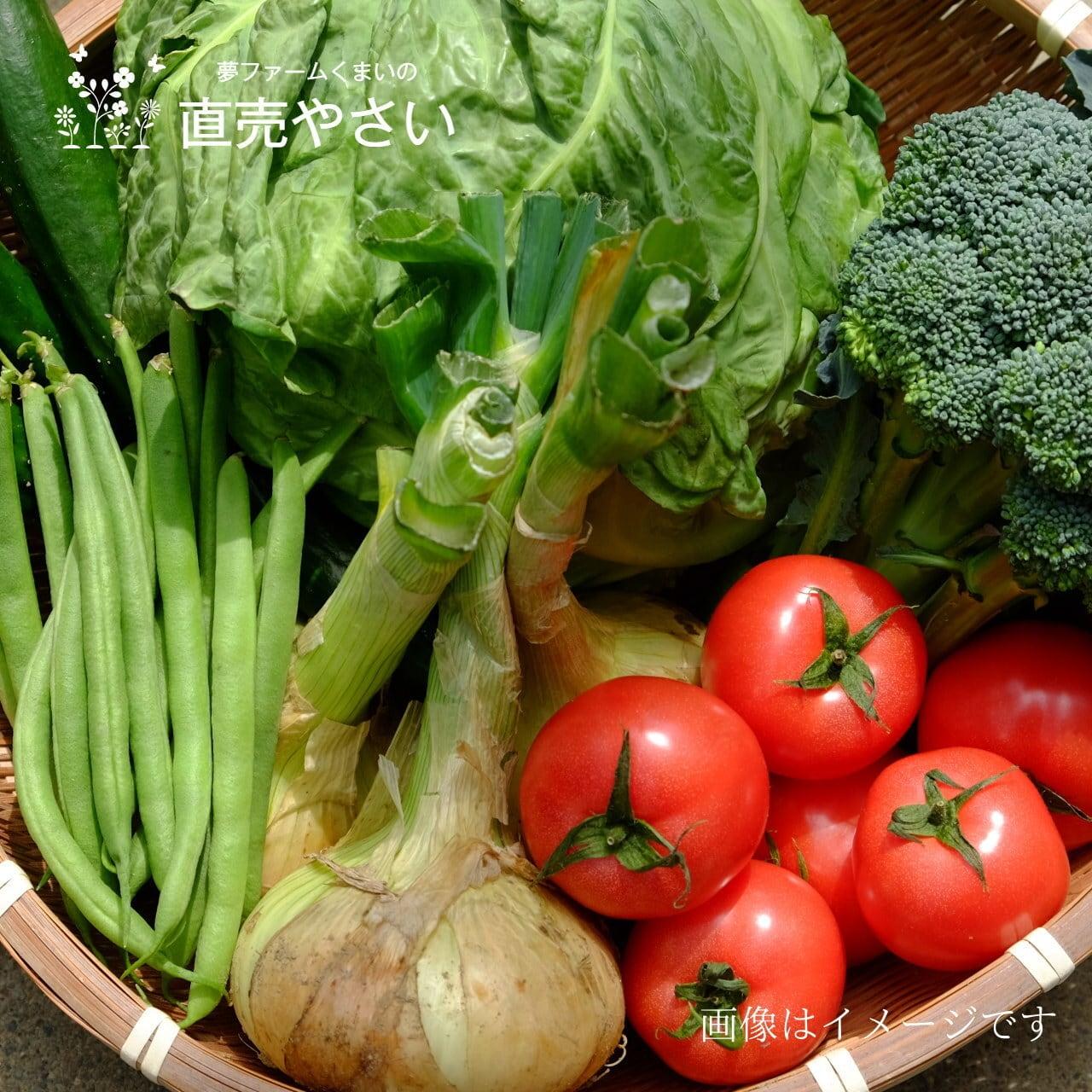 送料無料 7月の朝採り夏野菜詰合せ 8点セット 農家直売 野菜セット 毎週土曜日発送予定  【冷蔵便】