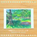 国営昭和記念公園の風景 ポストカードセットA