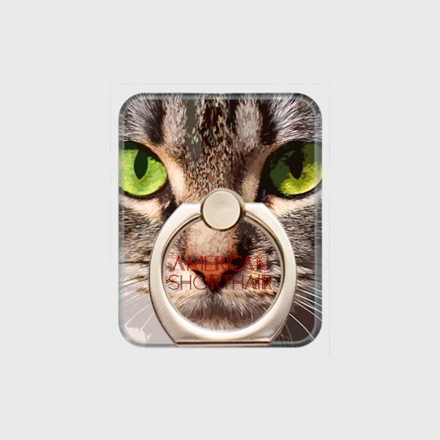 アメリカンショートヘア おしゃれな猫スマホリング【IMPACT -color- 】