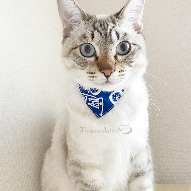 【プラモデル柄】猫用バンダナ風首輪/選べるアジャスター 猫首輪 安全首輪 子猫から成猫