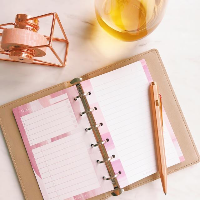 【残り3点】ピンクの手帳セット(ミニ6・システム手帳リフィル)