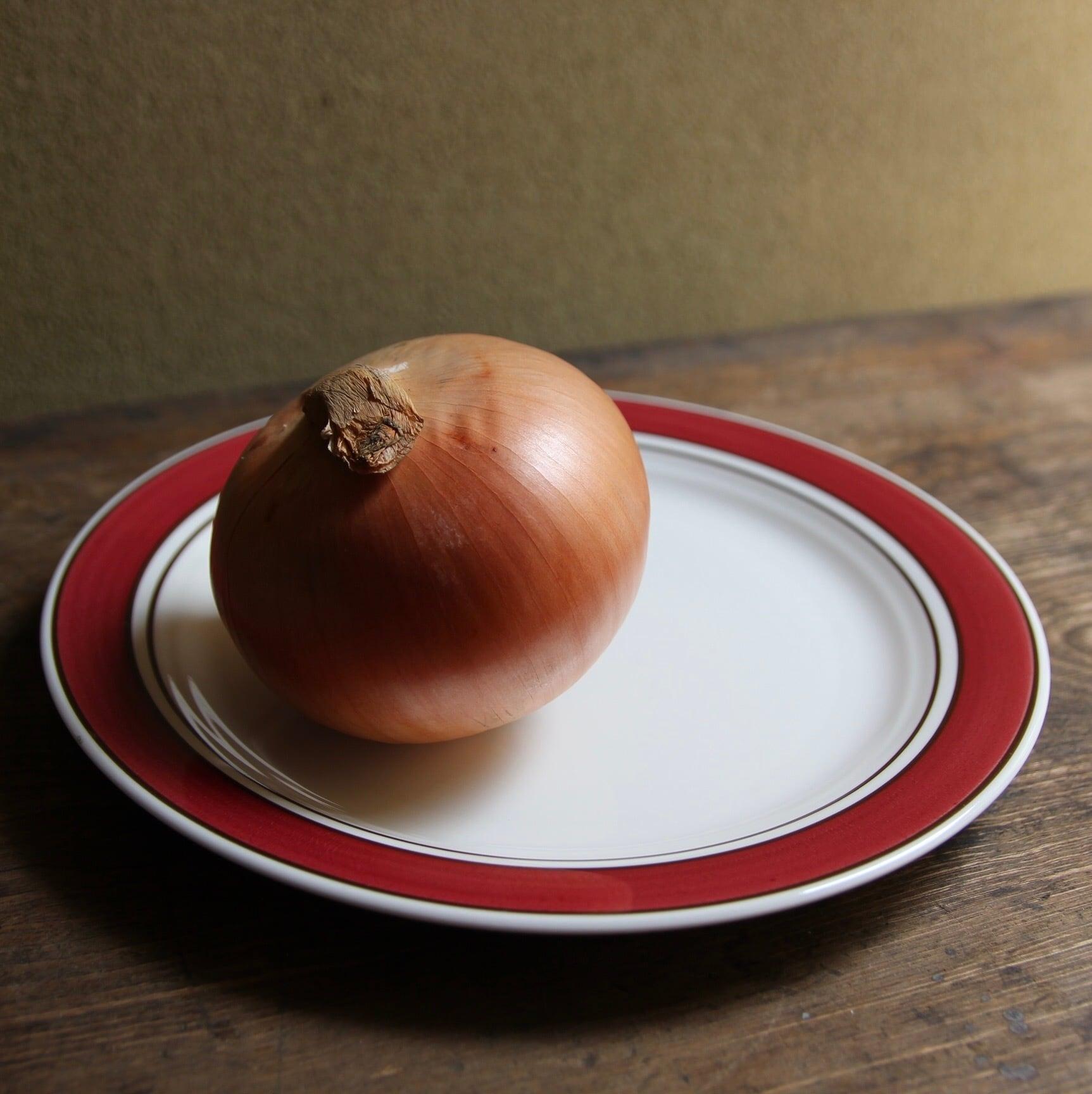 ノリタケ バーサトーン ディナー皿 在庫2枚