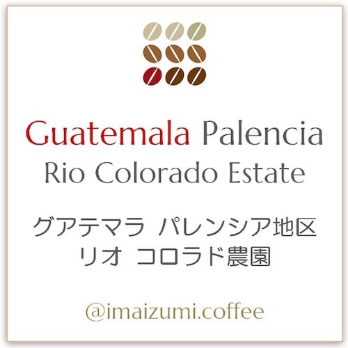 【送料込】グアテマラ パレンシア地区 リオ コロラド農園 - Guatemala Palencia Rio Colorado Estate - 300g(100g×3)