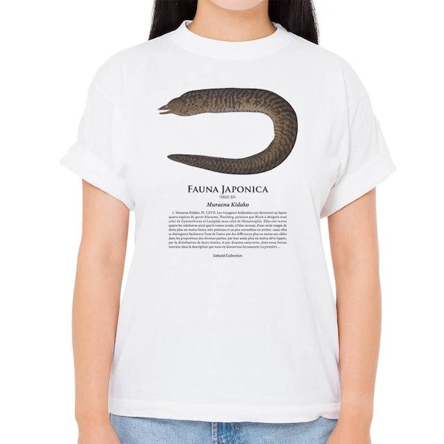 【ウツボ】シーボルトコレクション魚譜Tシャツ(高解像・昇華プリント)