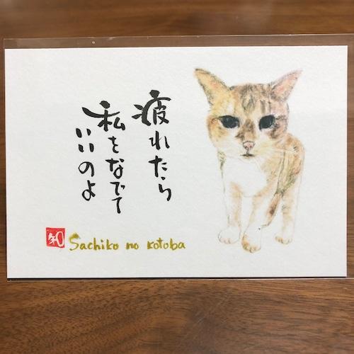 ポストカード 62(さち子)