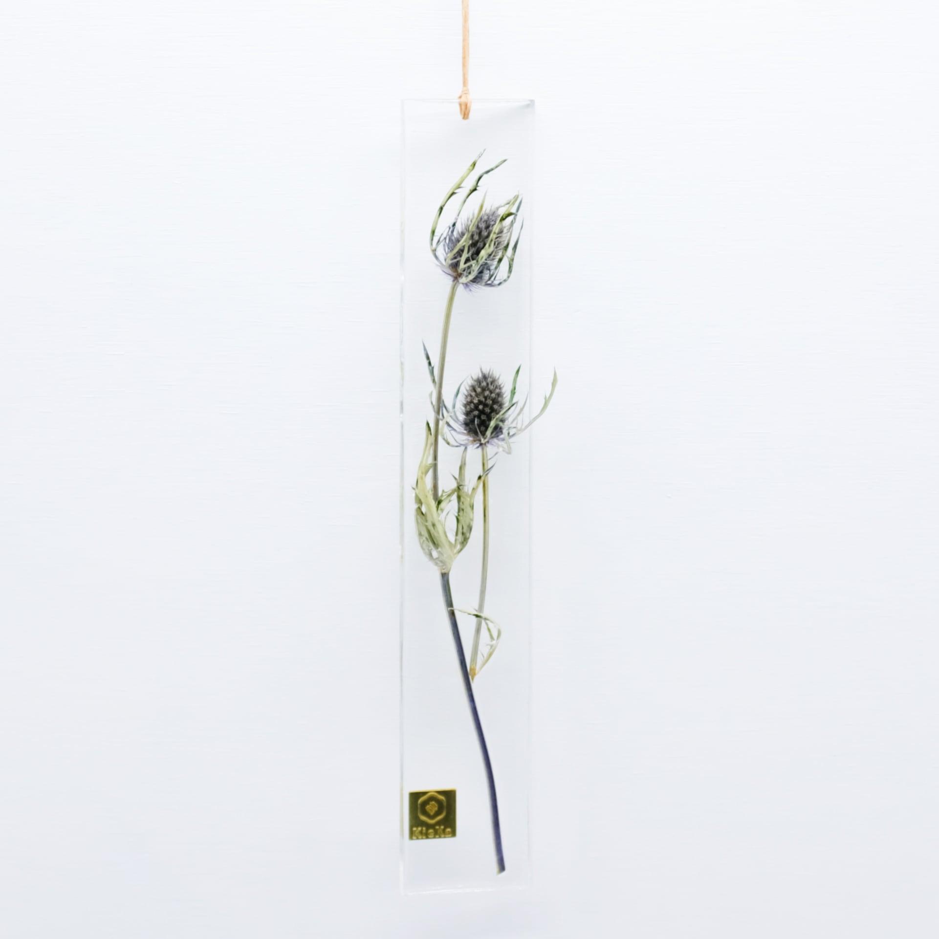 dried flower S エリンジウム