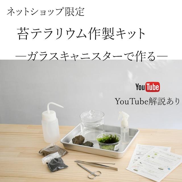 はじめての苔テラリウム作り ガラスキャニスターで作る苔テラリウム作製キット ◆動画解説付き
