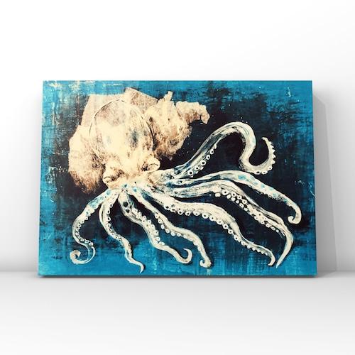 moyamoya-octopus