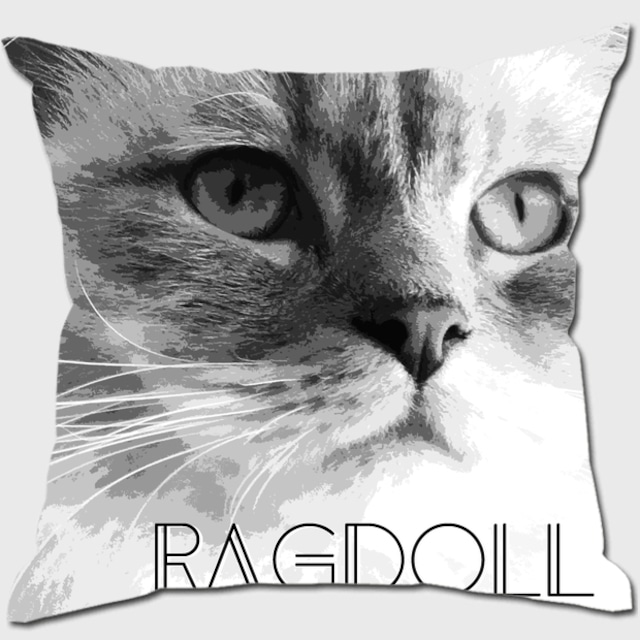 ラグドール 【IMPACT -shirokuro- 猫 クッション】