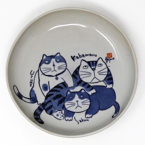 猫皿(やんちゃ猫大皿)かばまるうるめさこん