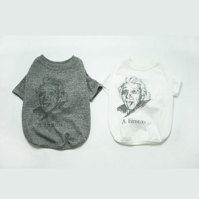 JACKSON MATISSE PETS Albert Einstein Tee
