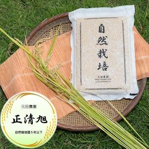 正清旭 2021年産 玄米5㎏脱気パック