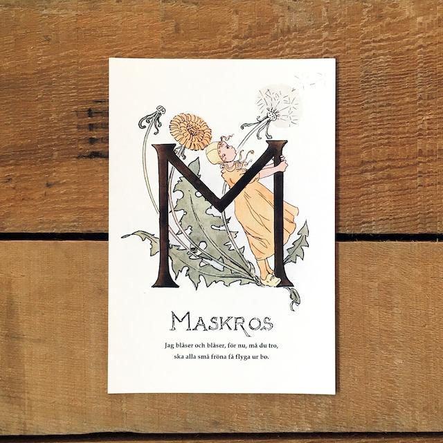 ポストカード「タンポポ@MASKROS(王子たちの花文字 - 13)」