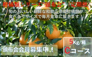 こだわり和歌山県産柑橘類 頒布会(定期便)Cコース【ご家庭用】【5kg /箱×9回コース】送料無料