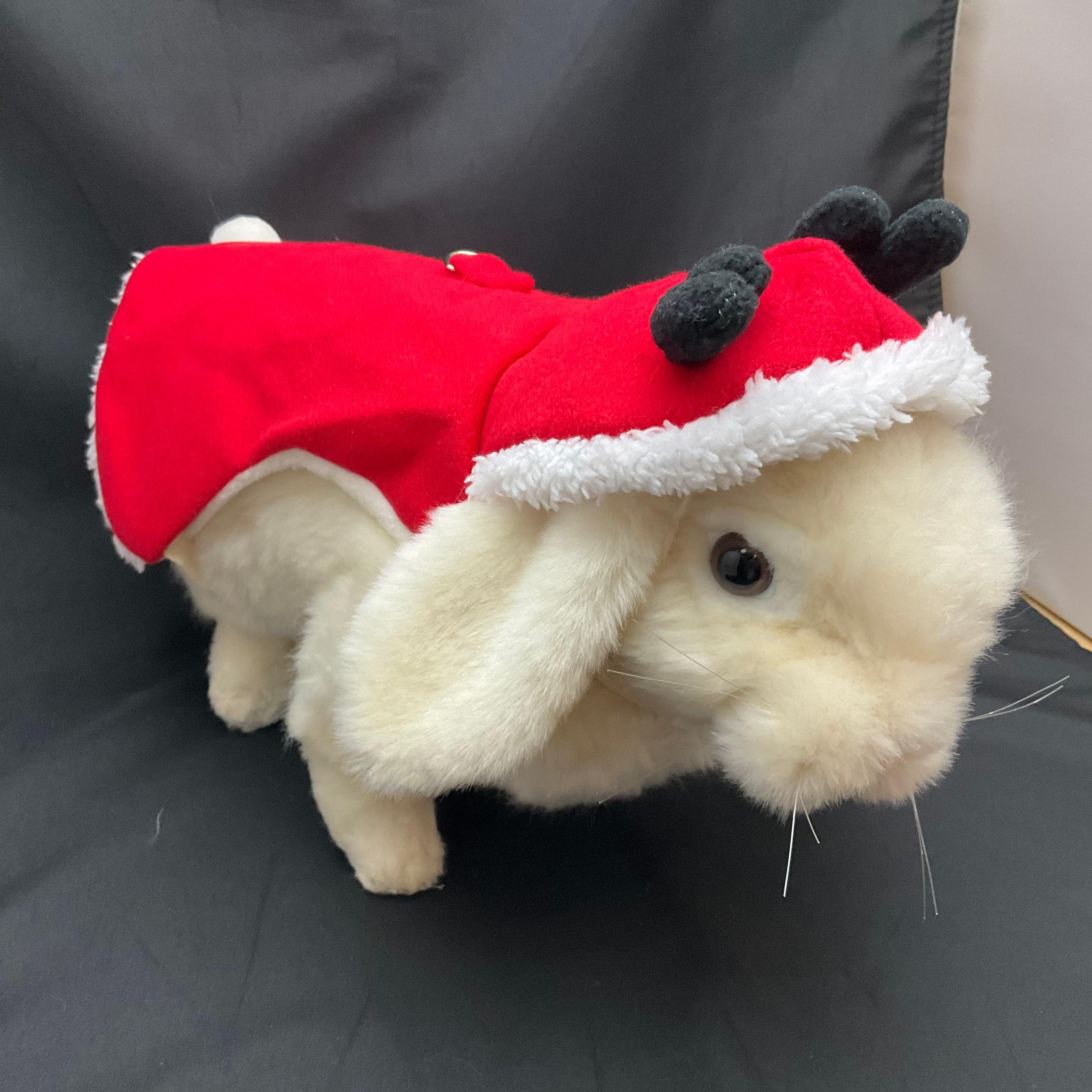 リード付ハーネス クリスマス