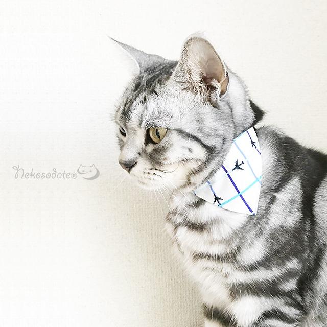 【エアライン柄】猫用バンダナ風首輪/選べるアジャスター 猫首輪 安全首輪 子猫から成猫