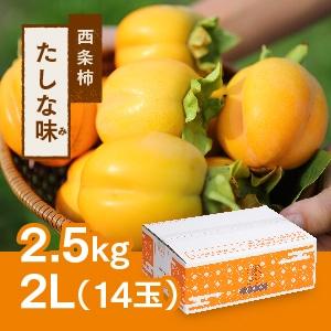 【予約 11月初旬頃より順次発送】西条柿 2L 14玉(2.5kg) たしな味
