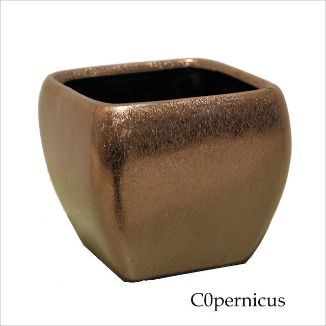 flowerbase10  陶器/花器/花瓶 浜松雑貨屋 C0pernicus
