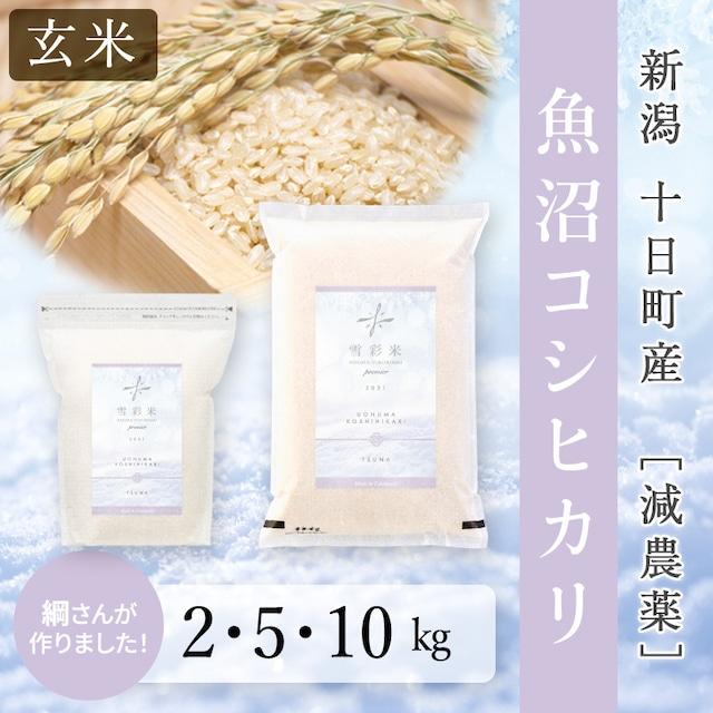 【雪彩米Premier】《玄米》令和3年産 十日町産 減農薬 新米 魚沼コシヒカリ 2~10kg
