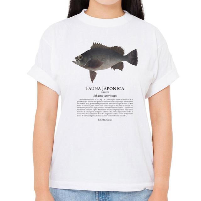 【クロメバル】シーボルトコレクション魚譜Tシャツ(高解像・昇華プリント)