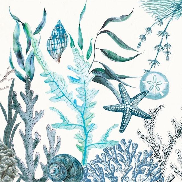 【MICHEL DESIGN WORKS】バラ売り1枚 ランチサイズ ペーパーナプキン Ocean Tide ホワイト