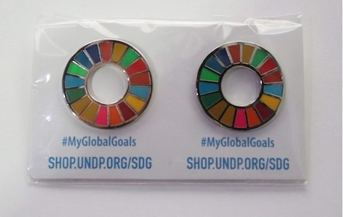 【2個】SDGsピンバッジ『SDGs EVO』